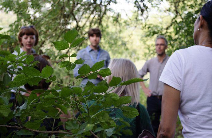 Marcus Coates and Fiona MacDonald : Feral Practice, Ash Walk, 2018. Photo: Matthew de Pulford